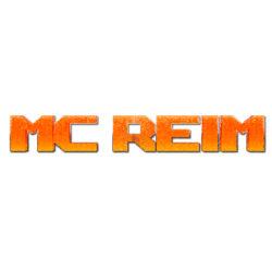 Reimanns Gameblog